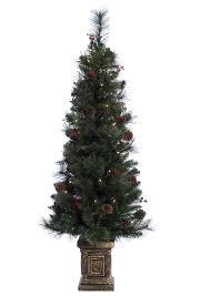 pe polyethylene trees trees you ll wayfair