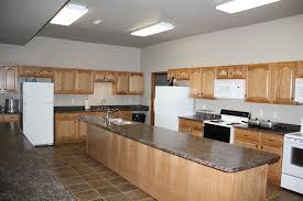 kitchen cabinets wholesale ny range hood backsplash primus 2