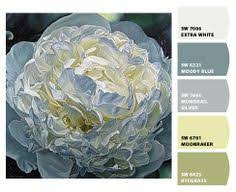 turkish coffee sw 6076 timeless color paint color sherwin