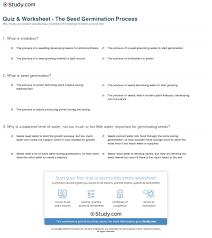 quiz u0026 worksheet the seed germination process study com