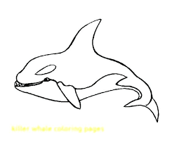 coloring page killer whale orca coloring pages coloring page killer whale coloring pages whale