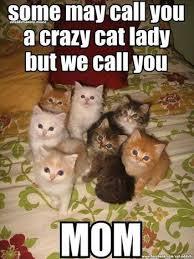 Cat Meme Ladies - 17 best cat ladies old or crazy 3 images on pinterest funny