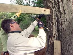 how to build a bridge for a tree fort how tos diy