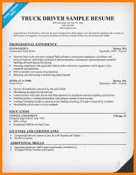 Delivery Driver Resume Example 5 Truck Driver Resume Example Sephora Resume