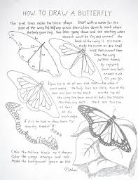 how to draw worksheets for the young artist how to draw a monarch