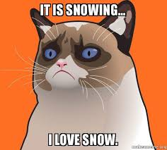 Grumpy Cat Snow Meme - it is snowing i love snow cartoon grumpy cat make a meme