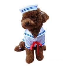 Sailors Halloween Costumes Sailor Boy Dog Costume Sailor Boy Halloween Costumes Dogs
