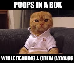 Meme Catalog - the 10 best preppy cat memes cats vs cancer