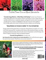 Map To Work Cannabis Energy Medicine 6 Week Map To Self Healing Volume 1