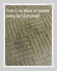 Rug Doctor Pro Review Whats In Your Carpets Rugdoctor Review Bloggomy