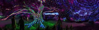 garden of lights hours vivid sydney at the royal botanic garden 2016 sydney