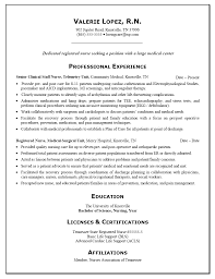 Accounting Student Resume Sample Of Resume With Detailed Job Description Nurse