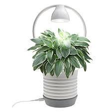 Indoor Herb Garden Light Light Indoor Herb Gardens