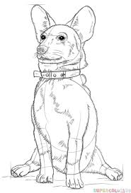 how to draw a corgi dog step by step drawing tutorials