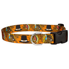 buy thanksgiving tradition featherweight deluxe collar