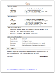 Sample Resume For Computer Engineer by Computer Science Resume Help Ssays For Sale