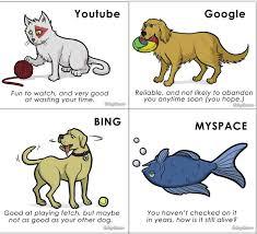 Profit Meme - internet jokes pets profit meme by prawnpringles memedroid