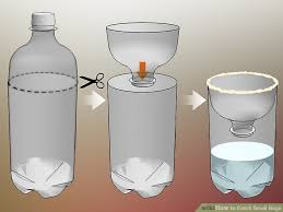 How To Make A Bed Bug Trap How To Catch Small Bugs 12 Steps With Pictures Wikihow