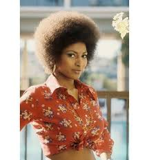 african american 70 s hairstyles for women 17 best 70s fashion images on pinterest black history black