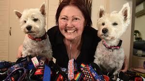 Seeking Melbourne Dingley Is Seeking Help To Make Pet Accessories