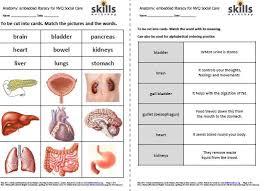 embedded literacy for social care anatomy skills workshop