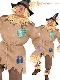 Ebay Halloween Costumes Adults Mens Ladies Scarecrow Costume Book Week Character Fancy Dress