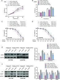 lncrna xist interacts with mir 29c to modulate the chemoresistance