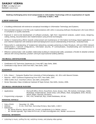 information technology graduate resume sle an embarrassing experience essay spm writing a college research