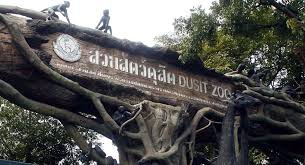 Zoo Increases Sales And Enhances Working Groups To Oversee Relocation Of Dusit Zoo To Pathum Thani