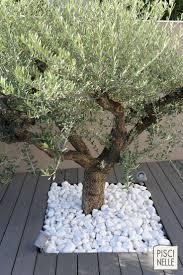 image amenagement jardin https www pinterest fr explore idées paysagistes