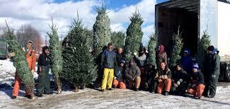 Washington Christmas Tree Farms - korson u0027s tree farms to showcase christmas trees at joe biden u0027s home