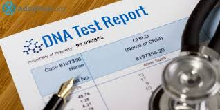 what is the best dna service adoption org