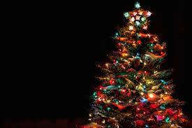 map 13 places to see a tree lighting in bed