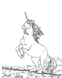 licorne coloriages pinterest licornes animaux fantastiques