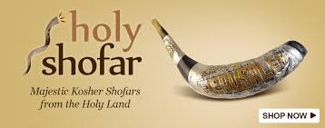 buy a shofar holy shofar the israel boutique