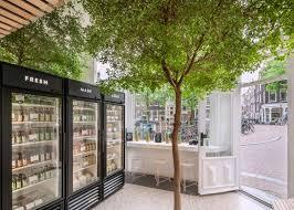 standard studio adds living tree to interior of juice shop juice