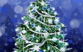 types of christmas trees pictures christmas lights decoration