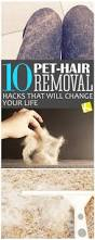 How To Remove Dog Hair From Car Upholstery 10 Pet Hair Removal Hacks That Will Change Your Life Pet Hair