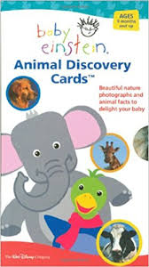 baby einstein animal discovery cards beautiful nature photographs