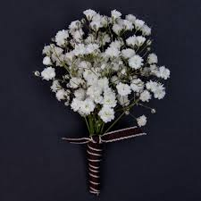 baby s breath flower baby s breath boutonniere welkes milwaukee florist