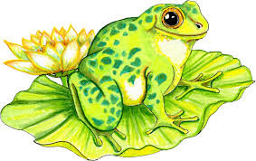 frog graphics free download clip art free clip art on