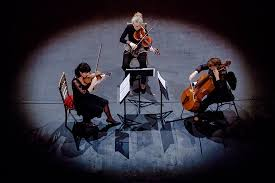 musique de chambre concert de musique de chambre stéphane moccozet picture of