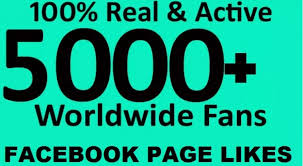 facebook fan page followers i will give 5000 facebook fanpage likes free 1000 instagram and