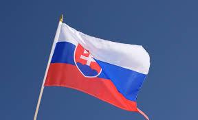 Slovak Flag Hand Waving Flag Slovakia 12x18