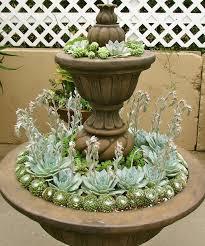 114 best succulent garden ideas images on pinterest plants