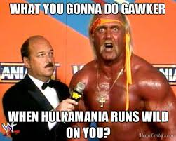 What You Gonna Do Meme - what you gonna do gawker hulk hogan s sex tape scandal know