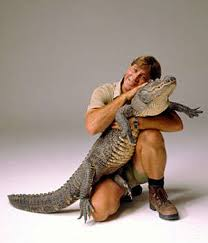 Alligator Halloween Costume Toddler Steve Irwin Raising 5 Kids Disabilities Remaining Sane Blog
