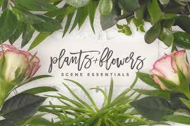 essentials plants flowers product mockups creative