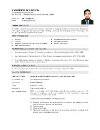 sample resume of accountant in dubai resume ixiplay free resume