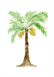 California Cool Scents Tropicana Free 1pc Palm Hang Outs Aroma Rand palm tree print palm tree watercolor print green brown